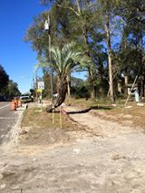 Town of LaCrosse Florida-TOLC's photo.
